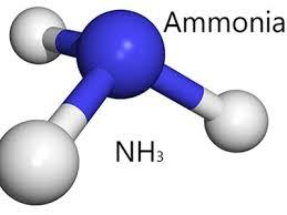 تحقیق درباره آمونیاک